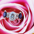 Engagement Ring in Rose — Stock Photo