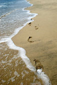 Footprints Washing Away — Stock Photo
