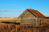 Rustic Shack — Stock Photo