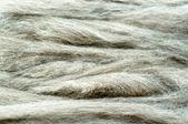 Gray wool background — Stock Photo