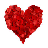 Heart made of rose petals on white — Stock Photo