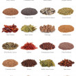 Spice and Herb Collection — Stock Photo #1935213