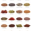 Stock Photo: Spice and Herb Collection