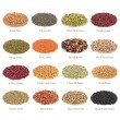 Pulses Collection with Titles - Stock Photo