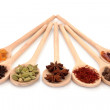Spice Selection - Stock Photo