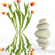Zen Garden Beauty — Stock Photo