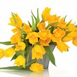 Yellow Tulip Flowers — Stock Photo #1988353