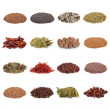 Spice and Herb Collection — Stock Photo #1989716
