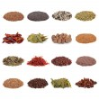 Spice and Herb Collection — Stock Photo