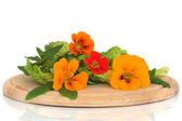 Nasturtian Flower and Herb Salad — Stock Photo