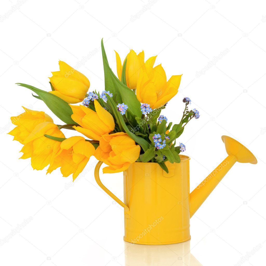 Tulip and forget me knot flowers in a yellow watering can, isolated over white background. — Stock Photo #1984521
