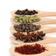 Royalty-Free Stock Photo: Spice Selection