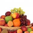 Fruit Selection — Stock Photo