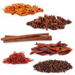 Stock Photo: Spice Selection