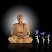 Enlightened Buddha — Stock Photo