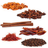 Spice Selection — Stock Photo