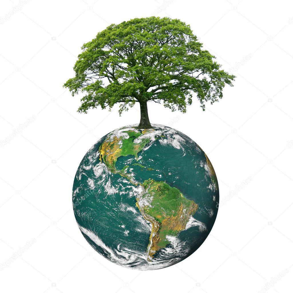 Earth Sciences: Stock Photo © Marilyna #2025112