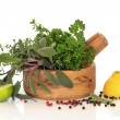 Herbs, Fruit and Spices - Stock Photo