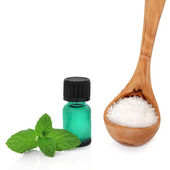 Peppermint Essence and Sea Salt — Stock Photo