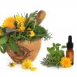 Herb and Wild Flower Therapy — Stock Photo