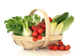 Salad Vegetables in a Basket — Stock Photo