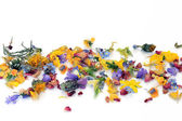 Scattered Flowers and Herbs — Stock Photo