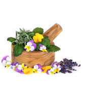 Medicinal and Culinary Herbs and Flowers — Stock Photo
