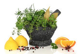 Herbs Spices and Citrus Fruit — Stock Photo