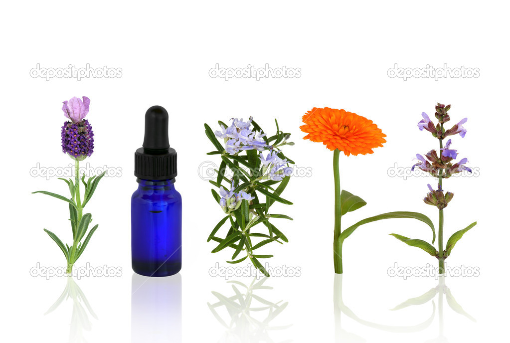 Lavender, rosemary, marigold and sage herbs in flower with an aromatherapy essential oil blue glass dropper bottle in a line. — Stock Photo #2057242