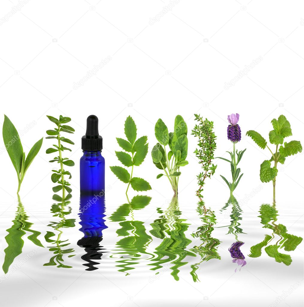 Herb leaf selection with an aromatherapy essential oil glass dropper bottle with reflection in rippled grey water.  Stock Photo #2058648