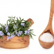 Sea Salt and Rosemary Herb — Stock Photo