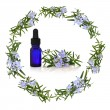 Rosemary Herb Flower Therapy - Stock Photo