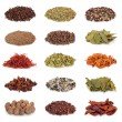 Spice and Herb Collection - Photo