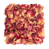 Rose Petal Confetti — Stock Photo