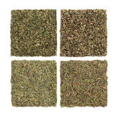 Herbes persil, sauge, romarin et thym — Photo