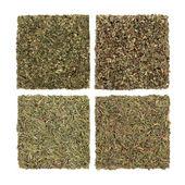 Peterselie, salie, rozemarijn en tijm kruiden — Stockfoto