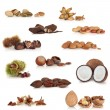 Royalty-Free Stock Photo: Nut Collection