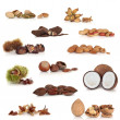 Stock Photo: Nut Collection