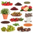 Super Food Collection — Stock Photo #2638649