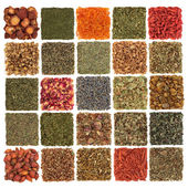 Herb, Spice, Fruit and Flower Selection — Stock Photo