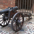 Old cannon — Stock Photo #1985550