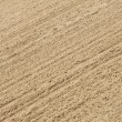 Sand background texture — Stock Photo