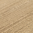 Stock Photo: Sand background texture