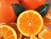 Orange composition — Stock Photo