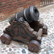 Old cannon — Stock Photo #2012887