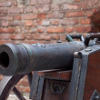 Old cannon — Stock Photo #2012952