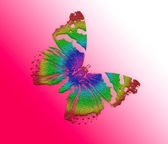 Abstract background with butterfly — Stock Photo