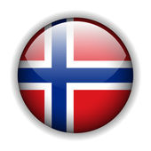 Flag of the Kingdom of Norway — Stock Vector