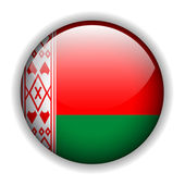 Flag of Belarus button, vector — Stock Vector