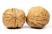 Two walnuts — Stock Photo